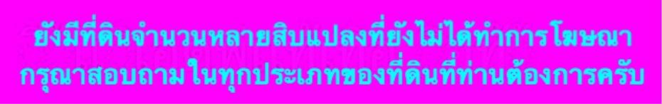 IMG_5209